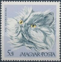 Hungary 1968 Domestic Cats h