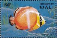 Mali 1997 Marine Life g