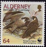 Alderney 2000 WWF Peregrine Falcon f