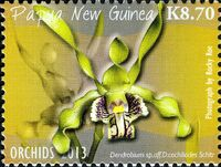 Papua New Guinea 2013 Orchids d