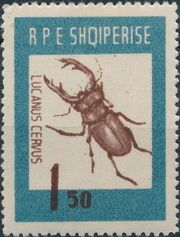 Albania 1963 Insects - Beetles b