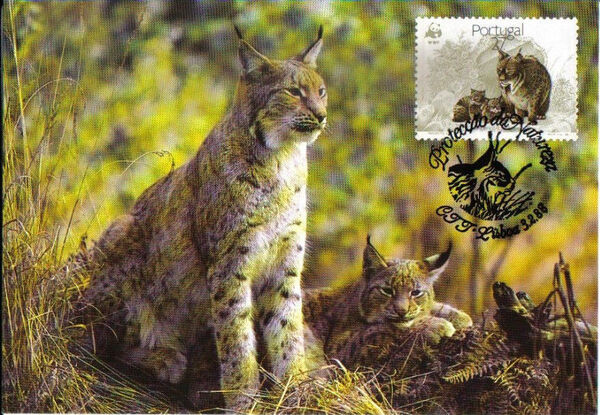 Portugal 1988 WWF Iberian Lynx (Lynx pardina) MCd