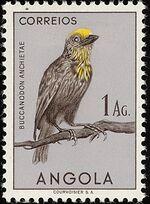 Angola 1951 Birds from Angola f
