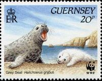 Guernsey 1990 WWF Marine Life a