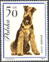 Poland 1963 Dogs d