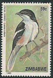 Zimbabwe 1992 Birds of Zimbabwe b