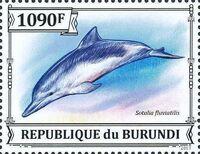 Burundi 2013 Dolphins e