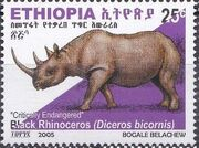 Ethiopia 2005 Black Rhinoceros e