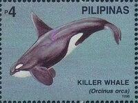 Philippines 1998 Marine Mammals Found in Philipines Waters j