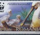 Romania 2006 WWF Eurasian Spoonbill