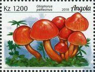 Angola 2018 Wildlife of Angola - Mushrooms e