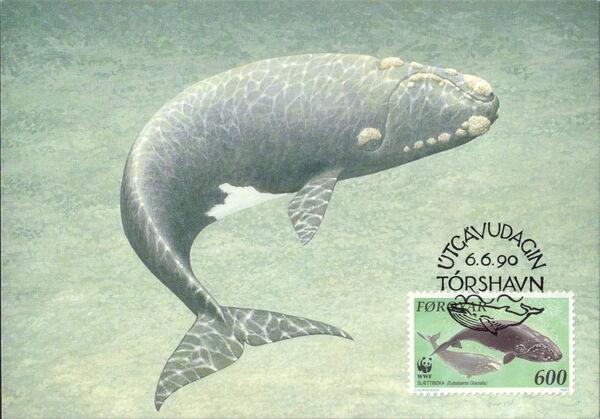 Faroe Islands 1990 WWF - Whales s