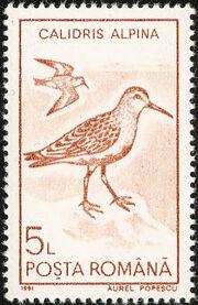 Romania 1991 Water birds h
