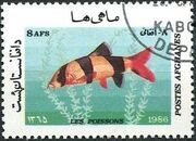 Afghanistan 1986 Fishes c