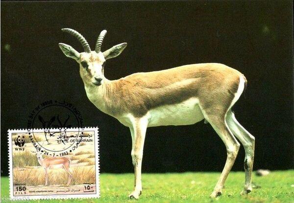 Bahrain 1993 WWF - Sand Gazelle MCe