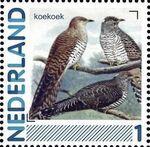 Netherlands 2011 Birds in Netherlands a32