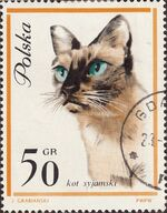 Poland 1964 European Cats c