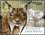 Portugal 2015 Reintroducing the Iberian Lynx into Portugal a