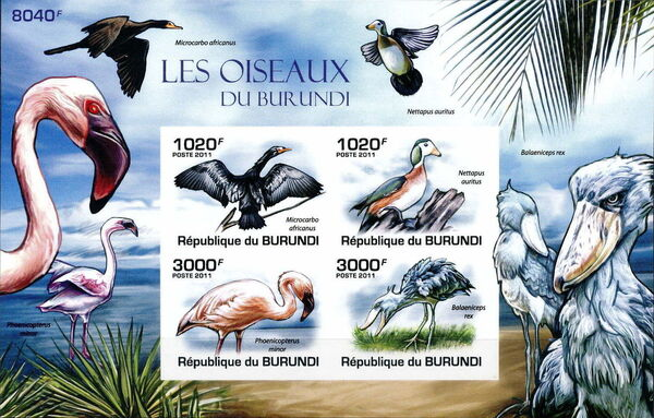 Burundi 2011 Birds of Burundi MSb