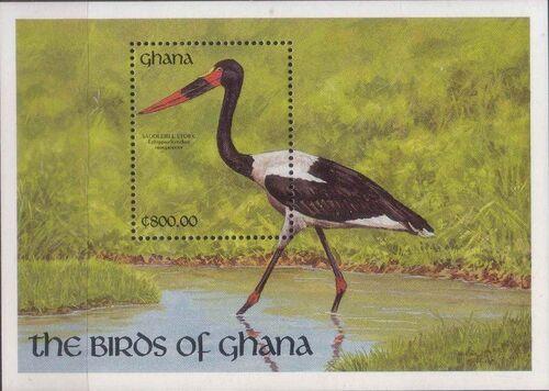 Ghana 1991 The Birds of Ghana w5