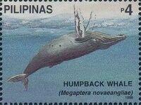 Philippines 1998 Marine Mammals Found in Philipines Waters b