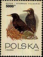 Poland 1993 Birds e
