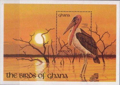Ghana 1991 The Birds of Ghana w4