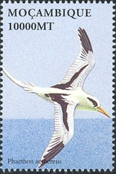 Mozambique 2002 Sea Birds of the World a