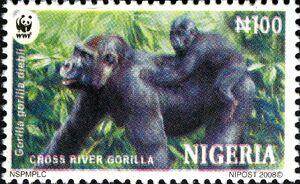 Nigeria 2008 WWF Cross River Gorilla c