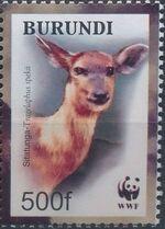 Burundi 2004 WWF Sitatunga c