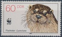 Germany DDR 1987 WWF - European Otter d