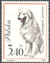 Poland 1963 Dogs h