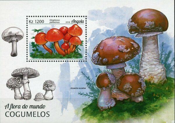 Angola 2018 Wildlife of Angola - Mushrooms SSa