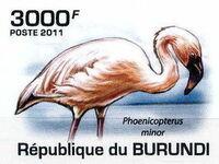 Burundi 2011 Birds of Burundi g