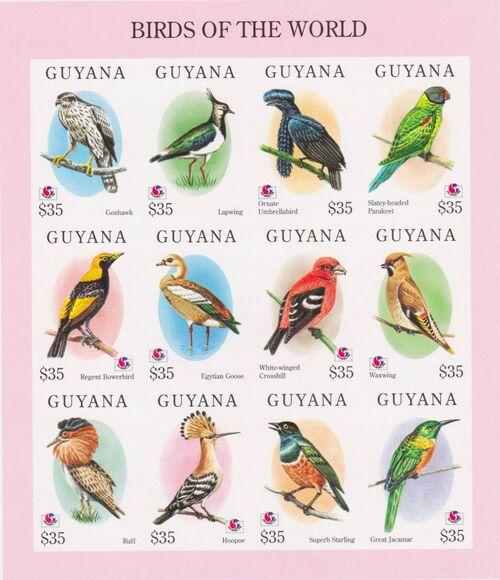 Guyana 1994 Birds of the World (PHILAKOREA '94) SSa2
