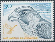 Monaco 1993 Birds of Prey in Mercantour National Park b