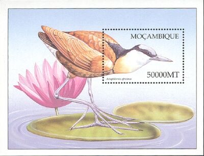 Mozambique 2002 Birds of Africa q