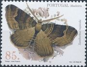 Madeira 1998 Insects from Madeira Island (2nd Issue) b