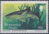 Montserrat 1987 Sharks b