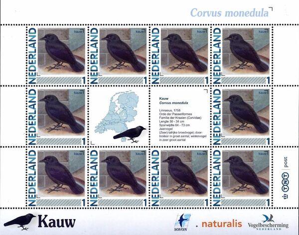 Netherlands 2011 Birds in Netherlands MS28
