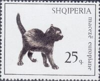Albania 1966 Cats c