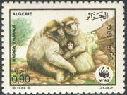 Algeria 1988 WWF - Barbary Macaque b