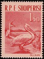 Albania 1961 Albanian Birds a