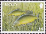 Jersey 2010 Jersey Nature - Freshwater Fish b