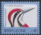 Sierra Leone 1992 Birds h