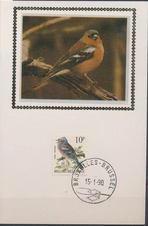 Belgium 1990 Birds (B) MCb