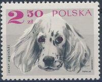 Poland 1969 Dogs e