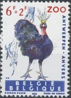 Belgium 1962 Birds of Antwerp Zoo f