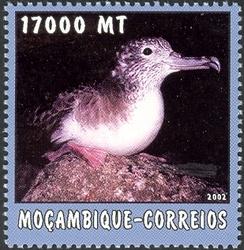 File:Mozambique 2002 The World of the Sea - Sea Birds 2 d.jpg