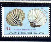 Angola 1981 Sea Shells Overprinted f